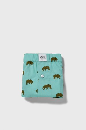 Zara Boxer popeline stampa orsi