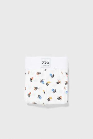 Zara Uomo Boxer shorts - Boxer stampa foglie