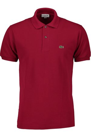 Lacoste Polo L1212 bordeaux