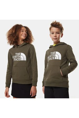 The North Face The North Face Felpa Con Cappuccio Bambini Drew Peak New Taupe Green/tnf White