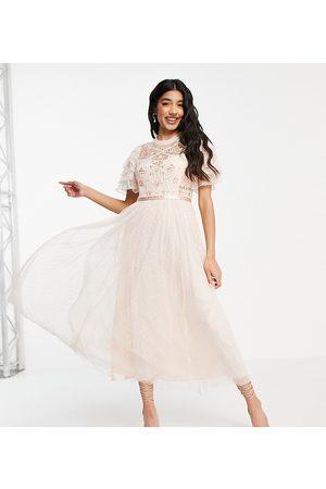Needle & Thread Isadora - Vestito con gonna al polpaccio stile ballerina con ricamo in pizzo color crema