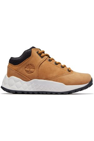 Timberland Sneaker Oxford Da Bambino Dal 30,5 Al 35 Solar Wave In