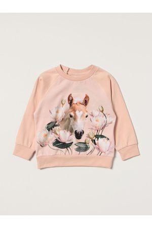 Molo T-Shirt Bambino colore Fa01